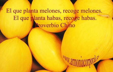 melones-pnl-para-adelgazar-disfrutando