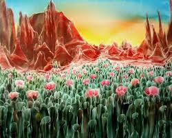 paisaje flores