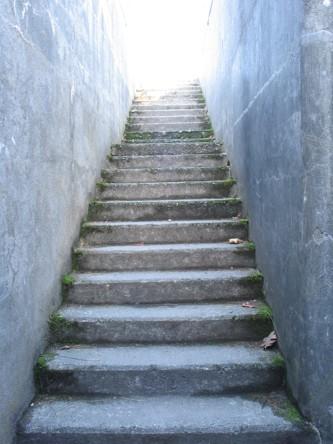 adelgazar subiendo escaleras