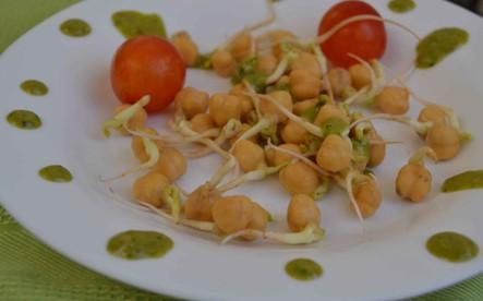 ensalada de garbanzos germinados y pesto-vegano
