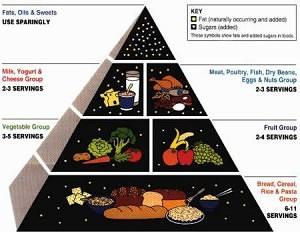 usda-food-guide-pyramid-1992-300x232
