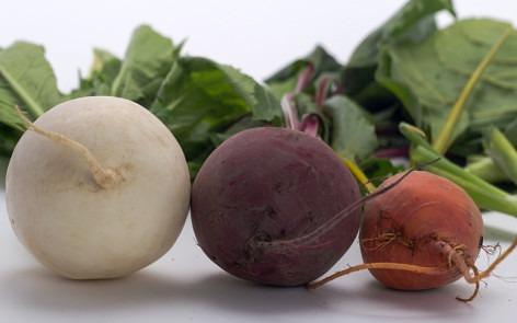 Alimentos ricos en fibra soluble para mejorar la flora intestinal