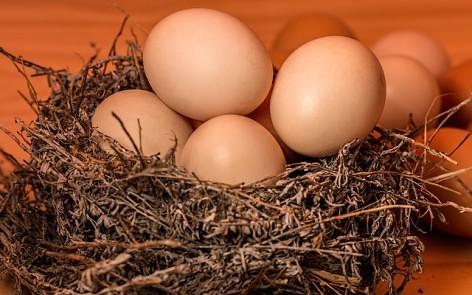 huevos para la frittata vegetariana