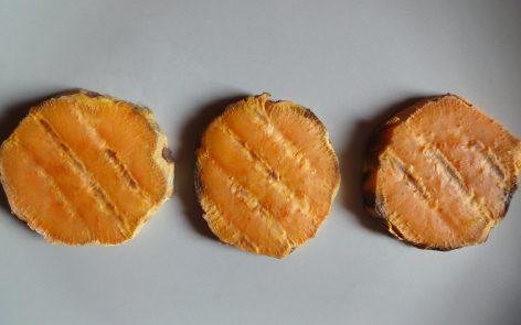 tostadas-de-boniato-para-adelgazar-disfrutando-1
