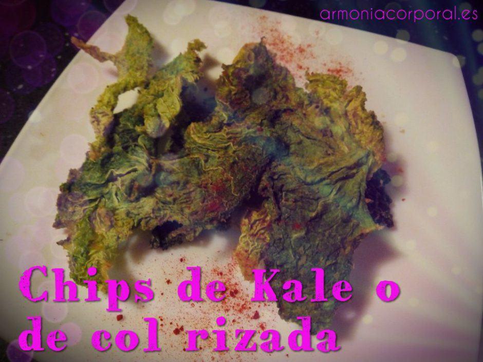 chips-de-col-o-kale-al-horno-o-deshidratador-1